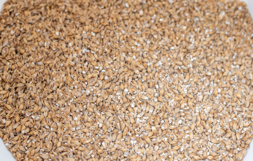 Crushed malted grains