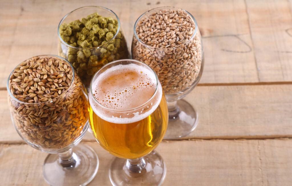 Hops, grains, and beer. Beer ingredients.