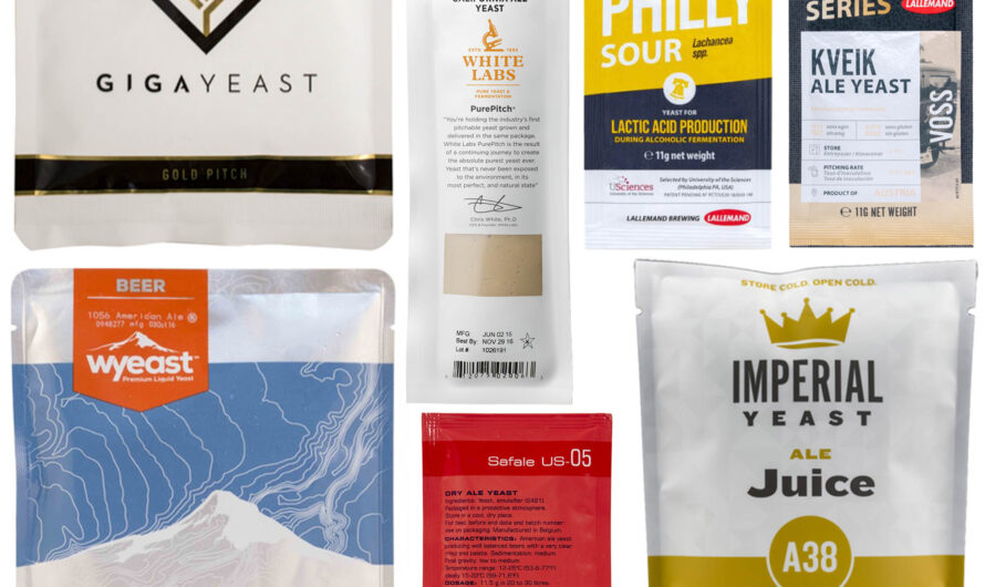 Dry Yeast vs. Liquid Yeast: Which Is Better for Brewing?