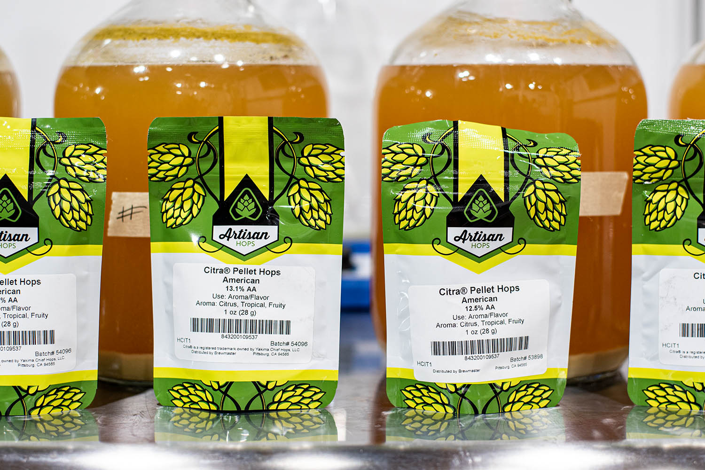Citra dry hops