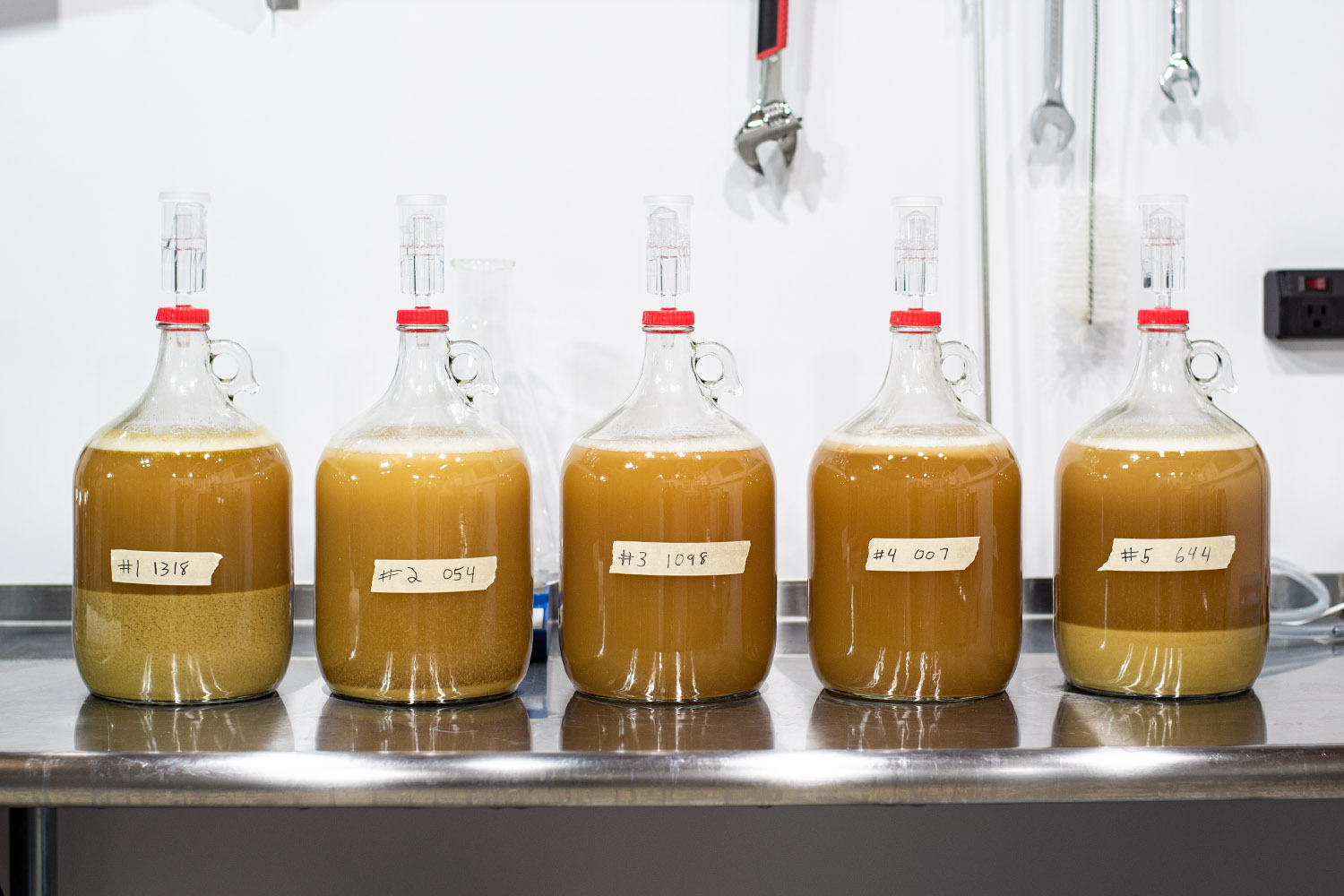 1 NEIPA Split With 5 Different Yeast Experiment at yeast pitch
