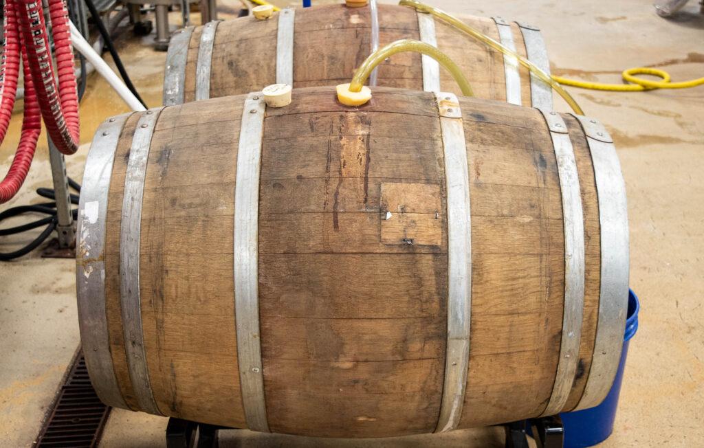 Beer aging in wine barrel